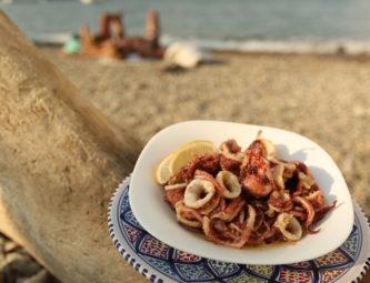 rec1-calamari
